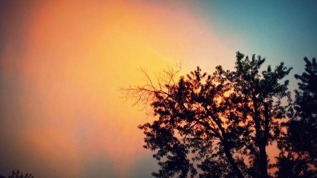Sunset #5212014